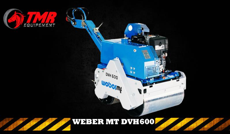 ROULEAU DUPLEX WEBER MT DVH600